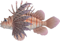 Zebra Turkeyfish NH.png