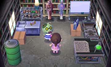 Interior of Cobb's house in Animal Crossing: New Leaf