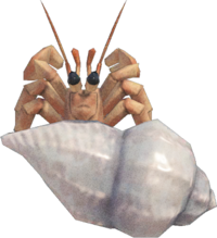 Hermit Crab NH.png
