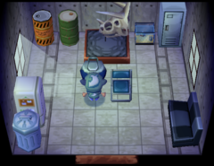 Camofrog's house interior