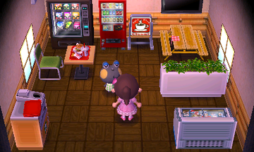 Interior of Huck's house in Animal Crossing: New Leaf