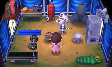 Interior of Rolf's house in Animal Crossing: New Leaf