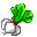 50 Turnips PG Inv Icon Upscaled.png