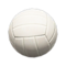 Ball (Volleyball) NH Icon.png