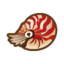 Chambered Nautilus NH Icon.png
