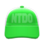 Mesh Cap (Green) NH Icon.png