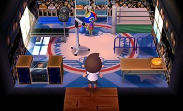 Interior of Stinky's house in Animal Crossing: New Leaf
