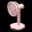 Fan (Pink)
