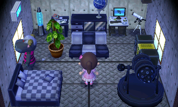 Interior of Rodeo's house in Animal Crossing: New Leaf