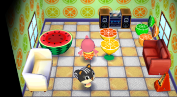 Interior of Blaire's house in Animal Crossing: City Folk