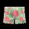 Botanical Shorts (White) NH Icon.png