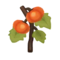 Orange Pumpkin PC Icon.png