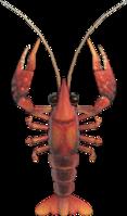 Crawfish NH.png