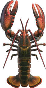 Lobster NH.png
