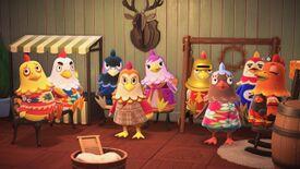 NH Chickens.jpg