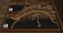 CF Stegosaur Museum.png