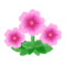 Pink Petunias PC Icon.png