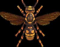 Wasp NH.png