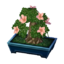 Azalea Bonsai NL Model.png