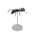 Ant Model NH Icon.png