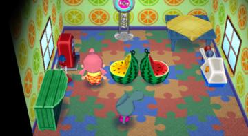 Interior of Samson's house in Animal Crossing: City Folk