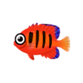 Flame Angelfish PC Icon.png