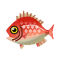 Red Snapper PC Icon.png