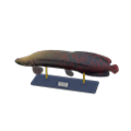 Arapaima Model NH Icon.png