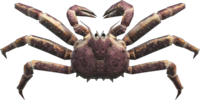 Red King Crab NH.png