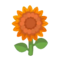 Orange Sunflower PC Icon.png