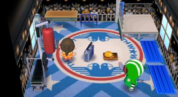 Interior of Big Top's house in Animal Crossing: City Folk