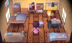 Benjamin's house interior
