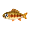 Golden Trout PC Icon.png