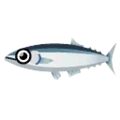 Pacific Saury PC Icon.png