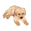 Labrador Model CF Model.png