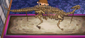 WW Parasaur Museum.png