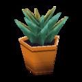 Aloe WW Model.png