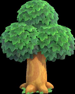 Oak Tree NH.png