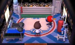Lucha's house interior