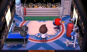 Interior of Lucha's house in Animal Crossing: New Leaf