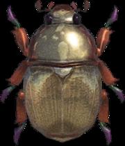Scarab Beetle NH.png