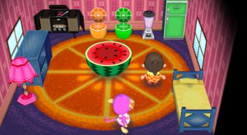 Interior of Nana's house in Animal Crossing: City Folk