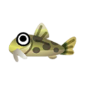 Loach PC Icon.png