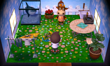Interior of Patty's house in Animal Crossing: New Leaf
