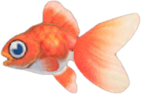Goldfish NH.png