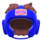 Headgear (Blue) NH Icon.png