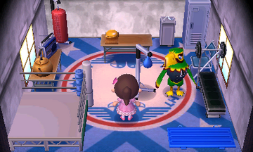 Interior of Frank's house in Animal Crossing: New Leaf