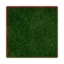Mossy Carpet PC Icon.png