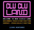 Clu Clu Land D Title Screen.png