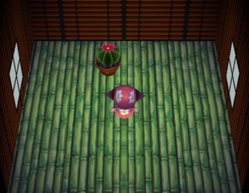 Interior of Bud's house in Animal Crossing